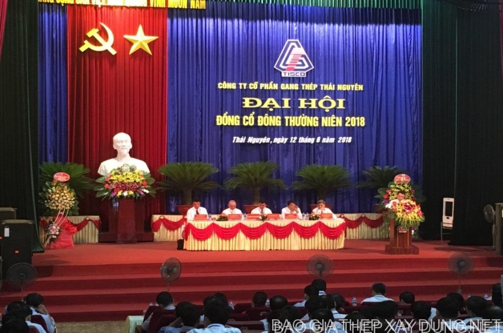 Gang thép Thái Nguyên: Thế chấp 2 mỏ và xử lý khoản vay hơn 1.800 tỷ đồng