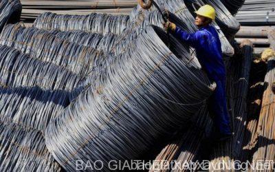 6 tháng, tổng kim ngạch xuất nhập khẩu Hà Tĩnh đạt gần 2 tỷ USD